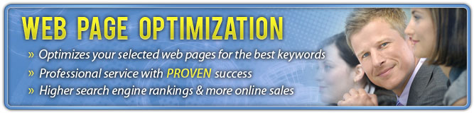 On page optimization is a professional service!